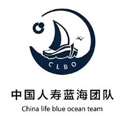 中国人寿海安支公司